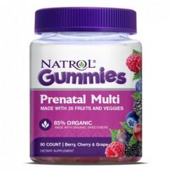 Natrol Prenatal Multi Gummies | 90 gummies
